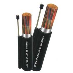 Dây cáp điện thoại 10x2 (10 đôi) thiết diện 0.5mm - Cáp treo có dầu chống ẩm